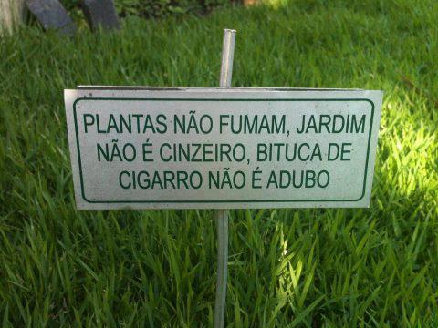 jardincinzeiro