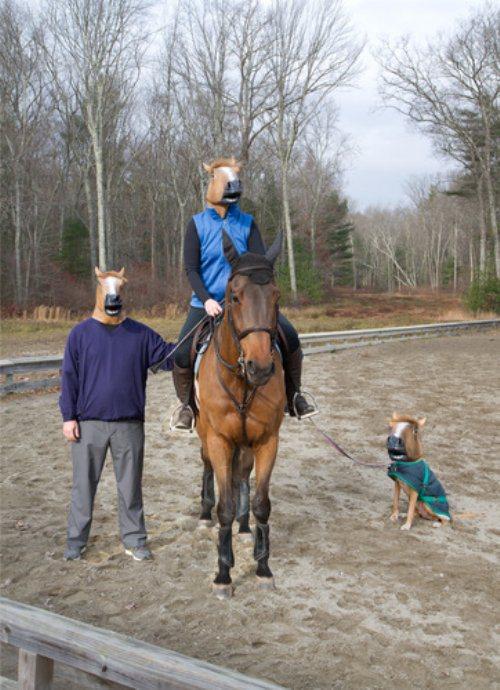 horse3mask