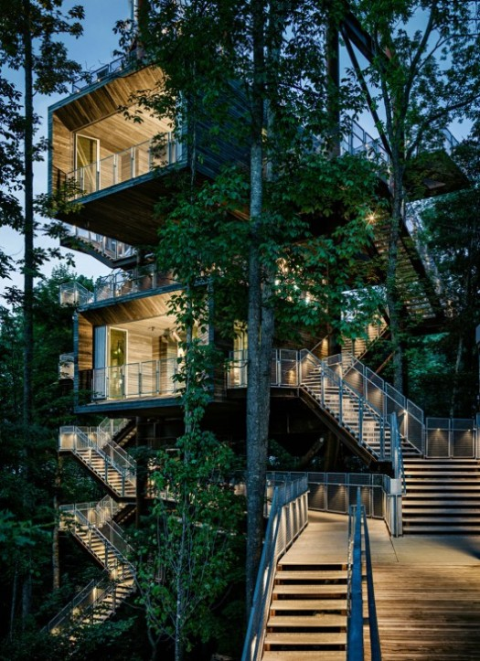 the-sustainability-treehouse