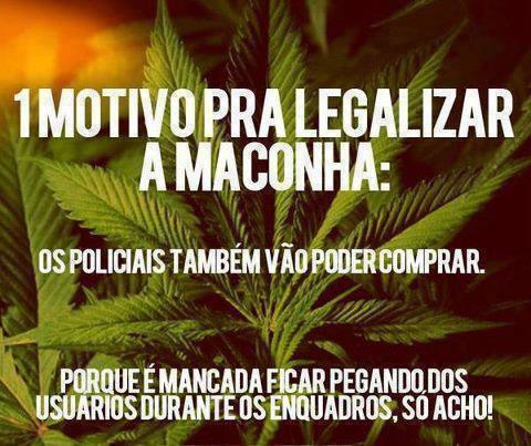 maconha1motivo