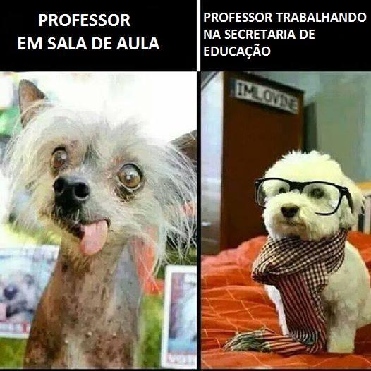 professorsecretaria