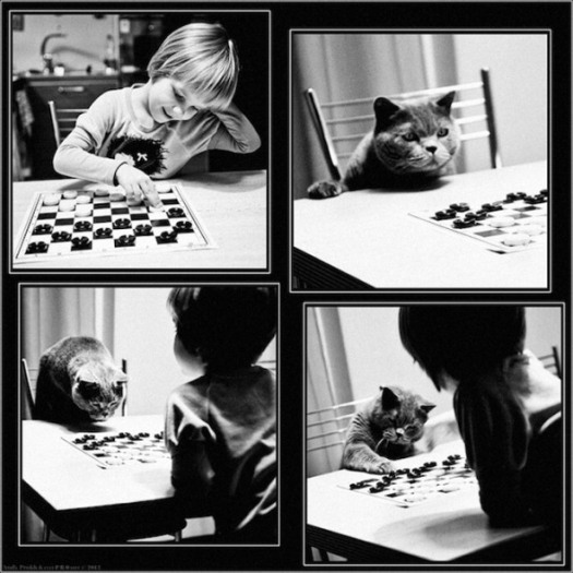andy-prokh-the-gamsters-checkers
