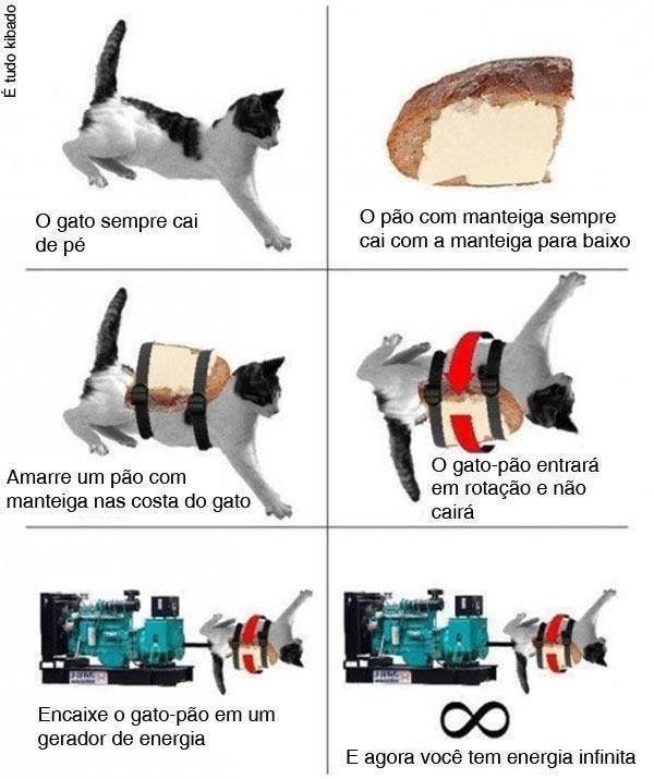 gatoMotorperpétuo
