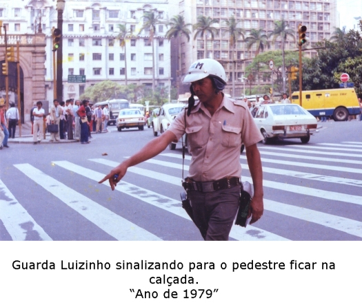 guardaluizcores