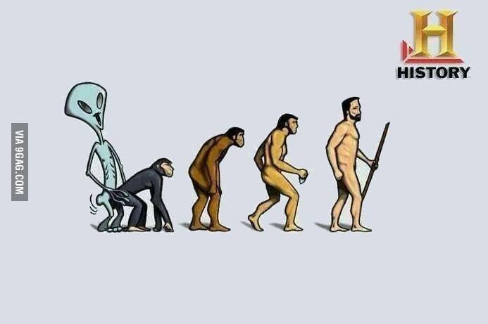 EVOLUCIONETMACACO