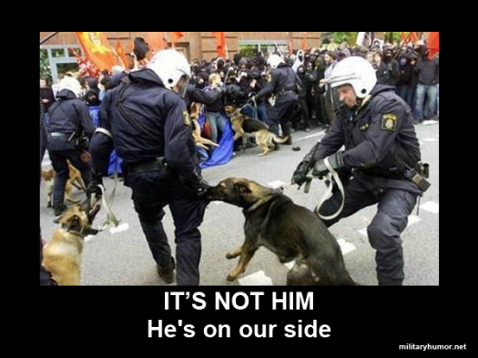 military-humor-its-not-him-hes-on-our-side-police-dog