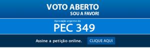 voto-aberto-online