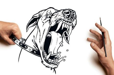 linguagem-corporal-dos-caes-cachorros-facial-verbal-fotos-imagens
