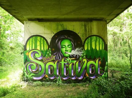 sativa2
